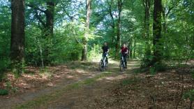 7-versnellingen Unisex fiets 2