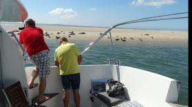 Sealtrip with the Riepel 3