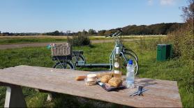 Struinen door de Duinen / circa 5 uur / 36 km / incl. ontvangst met koffie & thee en digitale groepsfoto  4