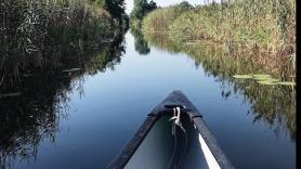 B Kanoën in een Canadese kano (2-3p) 4