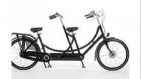 Tandem for adults 1