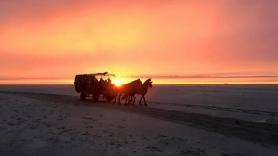Evening covered wagon ride with campfire 1