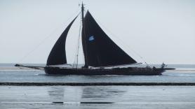 Sailing with clipper Willem Jacob (Eilandhopper) 3
