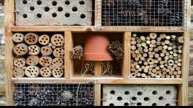 Workshop: Building an insect hotel 1