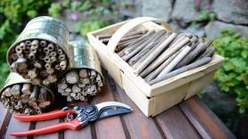 Workshop: Building an insect hotel 2