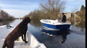 Sloep: Elektrisch, Fluisterboot vaartijd 8/9 uur, met kussens  2