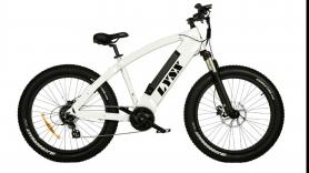 Elektrische Mountainbike 1
