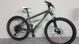 Mountainbike L  1