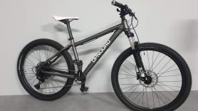 Mountainbike XL 1