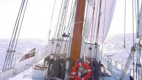 Sailing trip with 'de Toekomst' 1