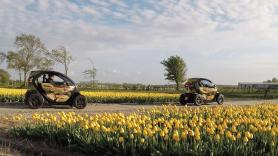 Family package / Tulip & Flower Fields GPS audio tour / 120 minutes / 2 Renault Twizies, suitable for 2 adults + 2 children / Coronaproof (ages 4 to 18 years) 1