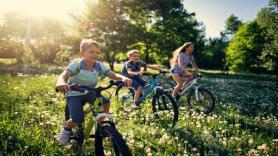 Children's bike 1