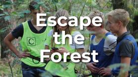 Escape The Forest 1