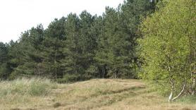 Op pad met de boswachter 2