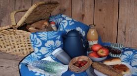 Romantic picnic 1