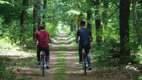 7-versnellingen Unisex fiets 3
