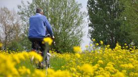 Elektrische fiets huren 4
