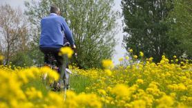 7-versnellingen Unisex fiets inc. entree Park Hoge Veluwe 2