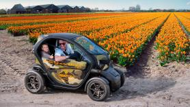 Tulip & Flower fields GPS audio tour / 120 minutes / 1 Renault Twizy, suitable for 2 people 1