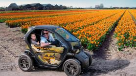 Tulip & Flower fields GPS audio tour / 90 minutes / 1 Renault Twizy, suitable for 2 people 1